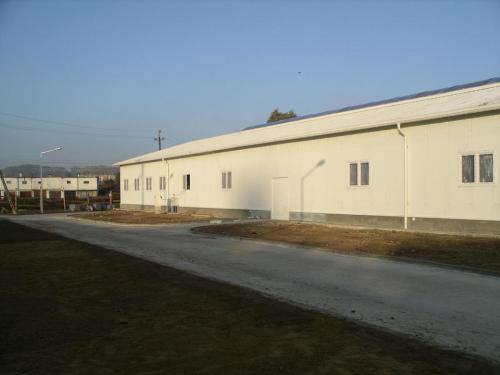 Budowa hali produkcyjnej (18)